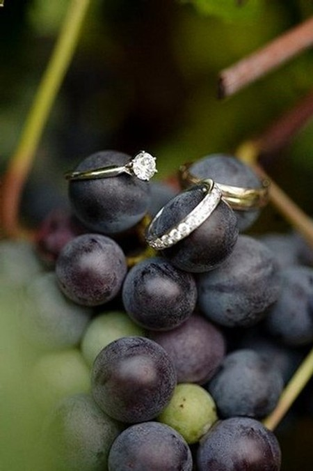 Image of wedding rings on a bunch of grapes